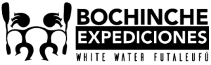 BochincheX Futaleufú